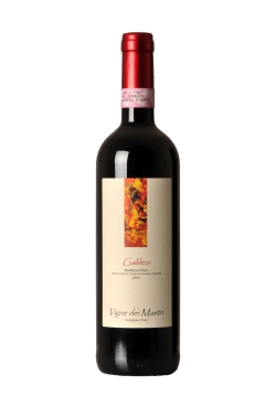 FB3_4259 galileo barbera d'asti